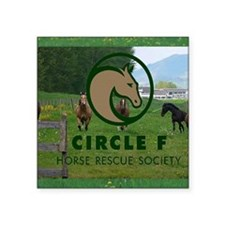 """Circle F logo and herd Square Sticker 3"""" x 3"""""""