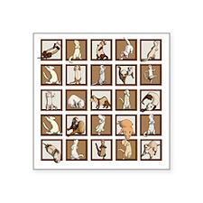 "Ferret Squares Shower Curta Square Sticker 3"" x 3"""