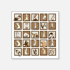 "Ferret Squares Shower Curta Square Sticker 3"" x 3"""
