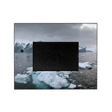 Icebergs Picture Frame