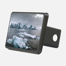 Icebergs Hitch Cover