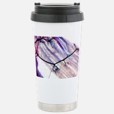 Muscle motor neurones, light mi Travel Mug