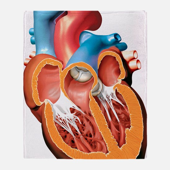 Human heart anatomy, artwork Throw Blanket