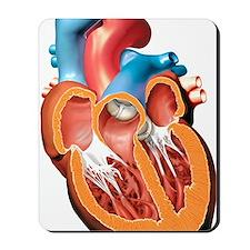 Human heart anatomy, artwork Mousepad