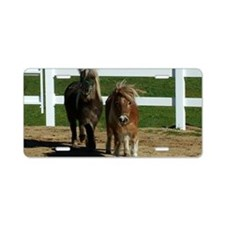 Cute Miniature Horses Aluminum License Plate
