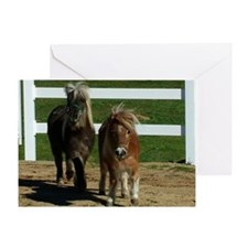Cute Miniature Horses Greeting Card