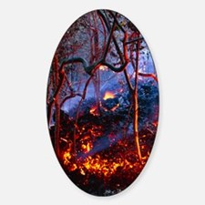 Hot ash from Kilauea volcano Decal