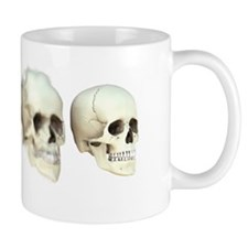 Human evolution Mug