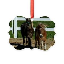 Cute Miniature Horses Ornament
