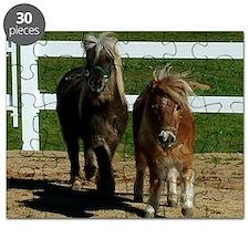 Cute Miniature Horses Puzzle