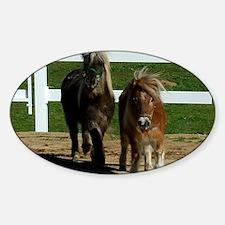 Cute Miniature Horses Decal