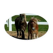 Cute Miniature Horses Oval Car Magnet