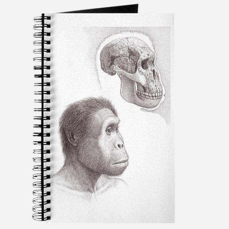 Homo rudolfensis Journal