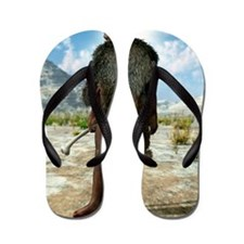 Homo erectus, artwork Flip Flops