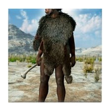 Homo erectus, artwork Tile Coaster