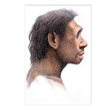 Homo antecessor Postcards (Package of 8)