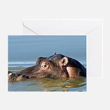 Hippopotamus in water Greeting Card
