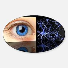 Mirror neurons, conceptual image Decal