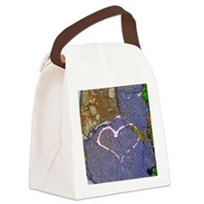 heart in stone Canvas Lunch Bag