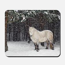 Highland pony Mousepad