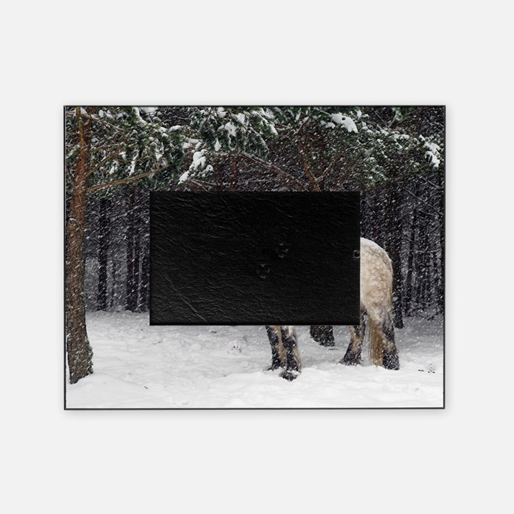 Highland pony Picture Frame