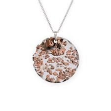 Hominid fossil skull 1470 Necklace Circle Charm