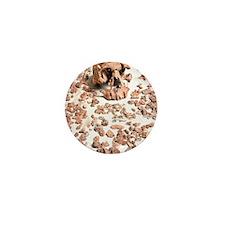 Hominid fossil skull 1470 Mini Button