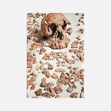 Hominid fossil skull 1470 Rectangle Magnet