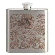 Hominid fossil skull 1470 Flask