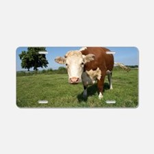 Hereford cow Aluminum License Plate
