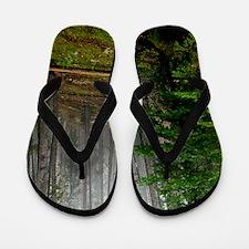 Pine forests 2 Flip Flops