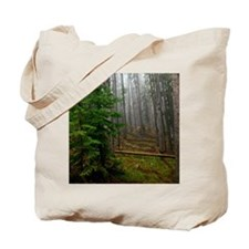Pine forests 2 Tote Bag