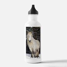Highland pony Water Bottle