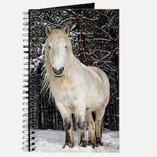 Highland pony Journal