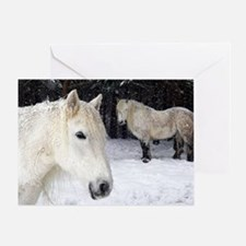 Highland ponies Greeting Card