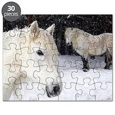 Highland ponies Puzzle