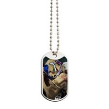 Hereford bull Dog Tags