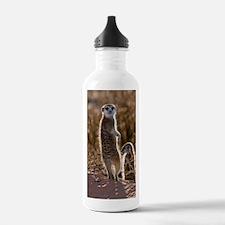 Meerkat Water Bottle