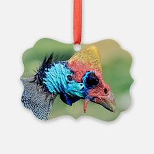 Helmeted Guineafowl head Ornament