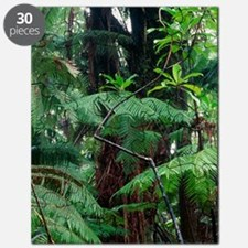 Hawaiian rainforest Puzzle