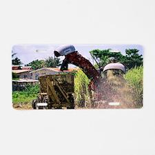 Harvesting sugar cane Aluminum License Plate