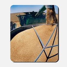 Harvesting grain Mousepad