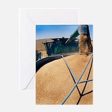 Harvesting grain Greeting Card