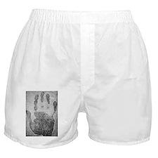 Handprint forensics, 19th century Boxer Shorts