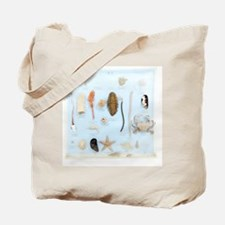 Marine life specimens Tote Bag