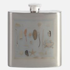 Marine life specimens Flask