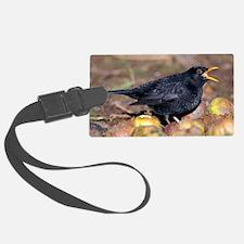 Male blackbird calling Luggage Tag