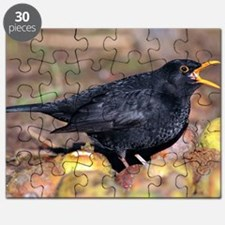 Male blackbird calling Puzzle