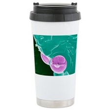 Malarial blood cell, SEM Travel Mug