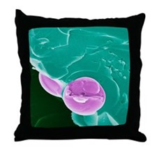 Malarial blood cell, SEM Throw Pillow